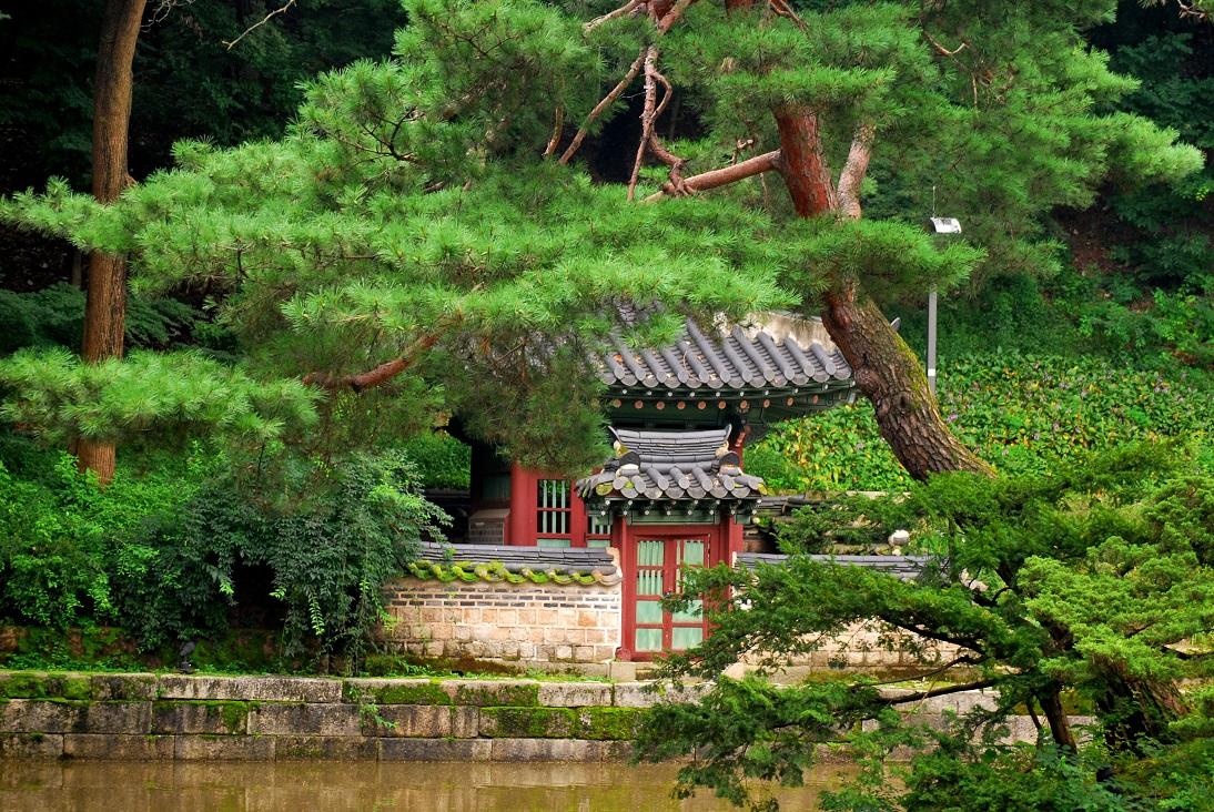 Corea | Storie di hanok, kimchi e divinazione