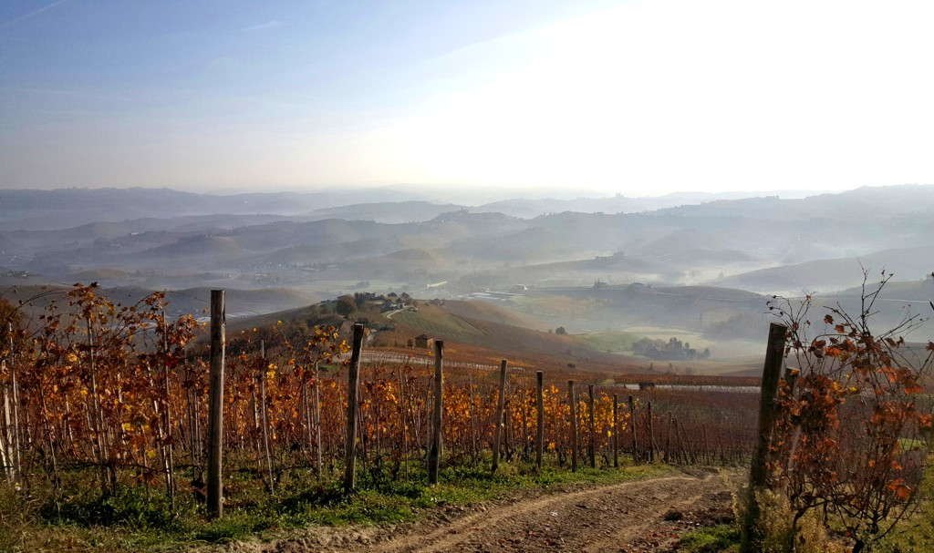 On the road nelle Langhe
