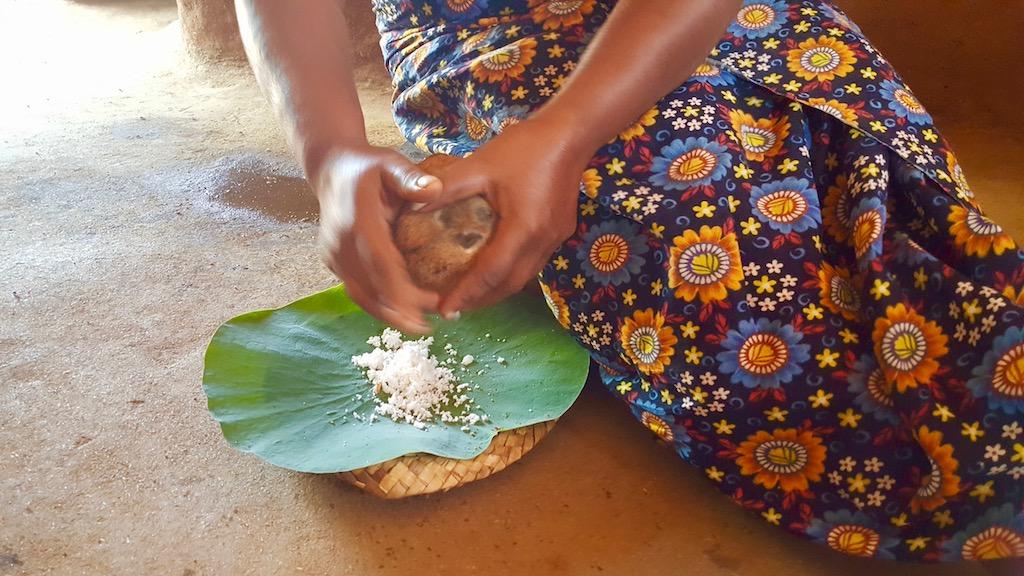 Sri Lanka e ayurveda: erbe e giusta alimentazione per curare corpo e mente