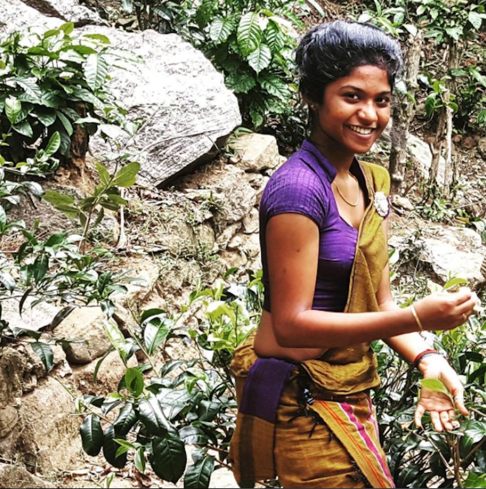 Sri Lanka: consigli per un viaggio perfetto